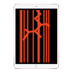 Apple iPad 5 (2017) Touch & LCD Screen Replacement