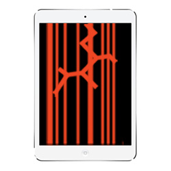 Apple iPad Mini Touch & LCD Screen Replacement